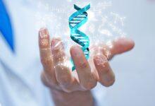 Photo of Ölümsüzlüğün şifresi: İnsan Genom Projesi..